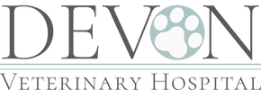 DEVON VETERINARY HOSPITAL